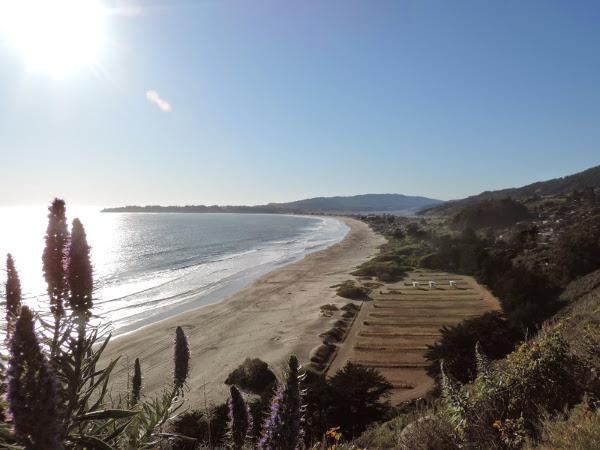 la-californie-au-naturel