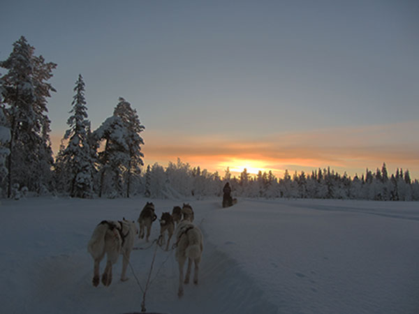 voyage-en-laponie-finlandaise