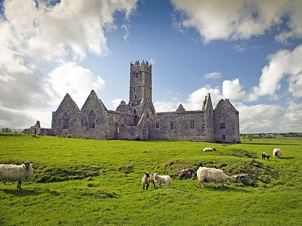 l-irlande-sauvage