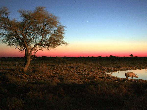namibie-entre-desert-et-ocean